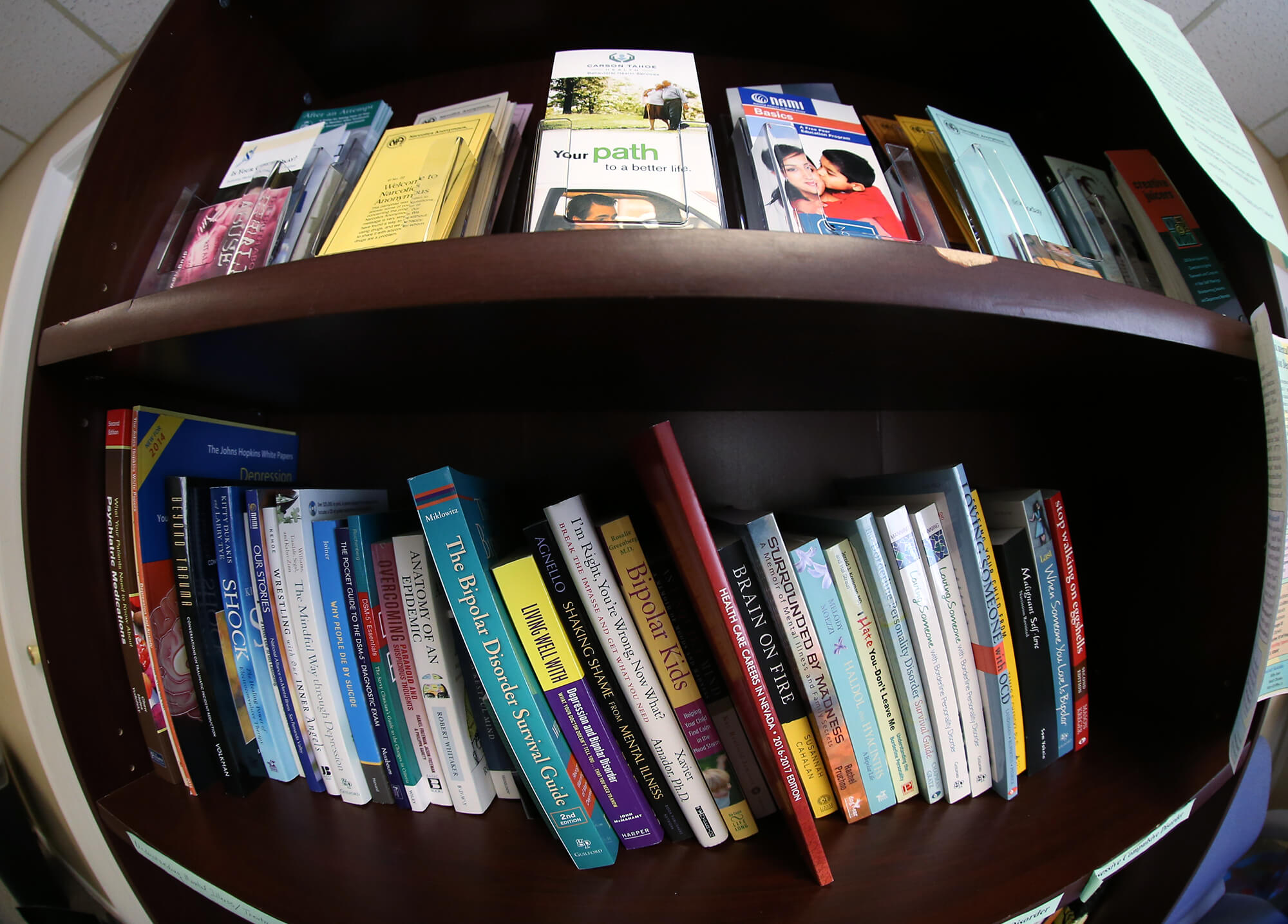 A fish-eye view of colorful books and brochures on a dark brown, wood bookshelf.